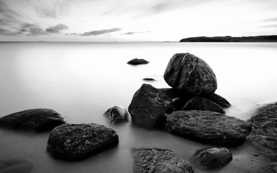 Convert your black & white photos with DxO FilmPack 4