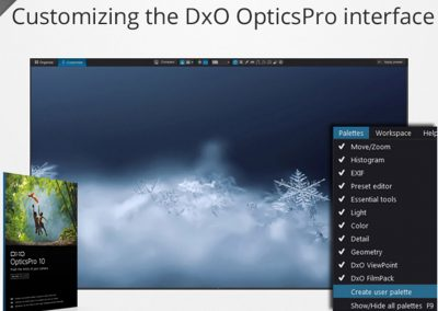 Customizing the DxO OpticsPro interface