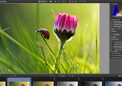 Working with virtual copies in DxO OpticsPro