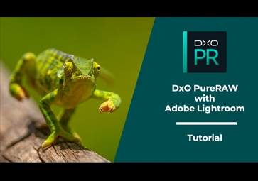 チュートリアル 2 – DxO PureRAW と Adobe Lightroom