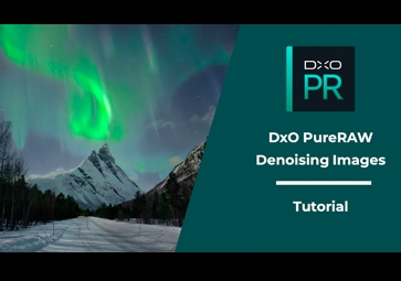 Denoising images with DxO PureRAW ⎜Tutorial